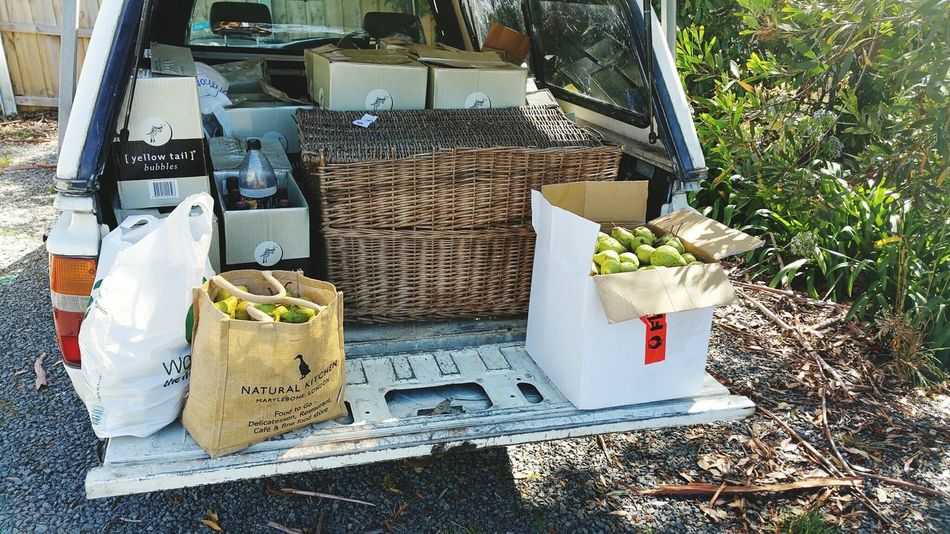 Foraging Pears to make wine and cider from a friends tree. Also just picked up 140 empty champagne Bottles