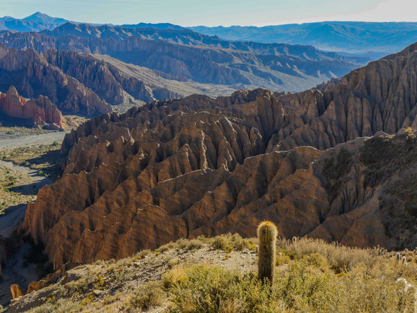 TUPIZA Bolivia Traveling EyeEm Nature Lover Beauty In Nature Eye4photography  Nature Landscapes Landscape EyeEm Gallery Nature_collection Rock Formation Rocky Mountains Outdoors Geology Mountain Range Travel Landscape_Collection Naturelovers Eyeem Bolivia Non-urban Scene On The Road Tranquil Scene Rock Formation Cactus