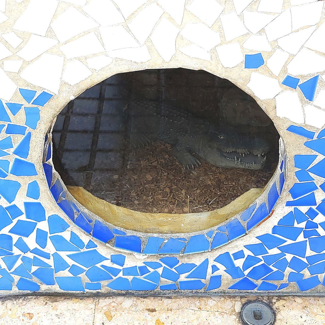 circle, shape, geometric shape, day, blue, pattern, design, wall - building feature, no people, architecture, built structure, nature, outdoors, hole, directly above, wall, window, building exterior, sunlight, round, concrete, floral pattern