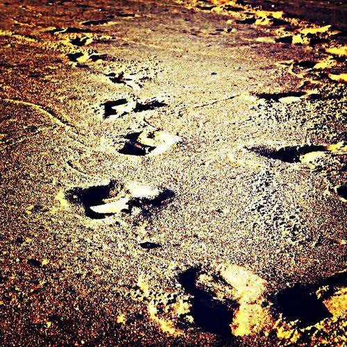 Un peu de soleil, de sable et beaucoup de couleurs ... Seignosse, Hossegor, Capbreton