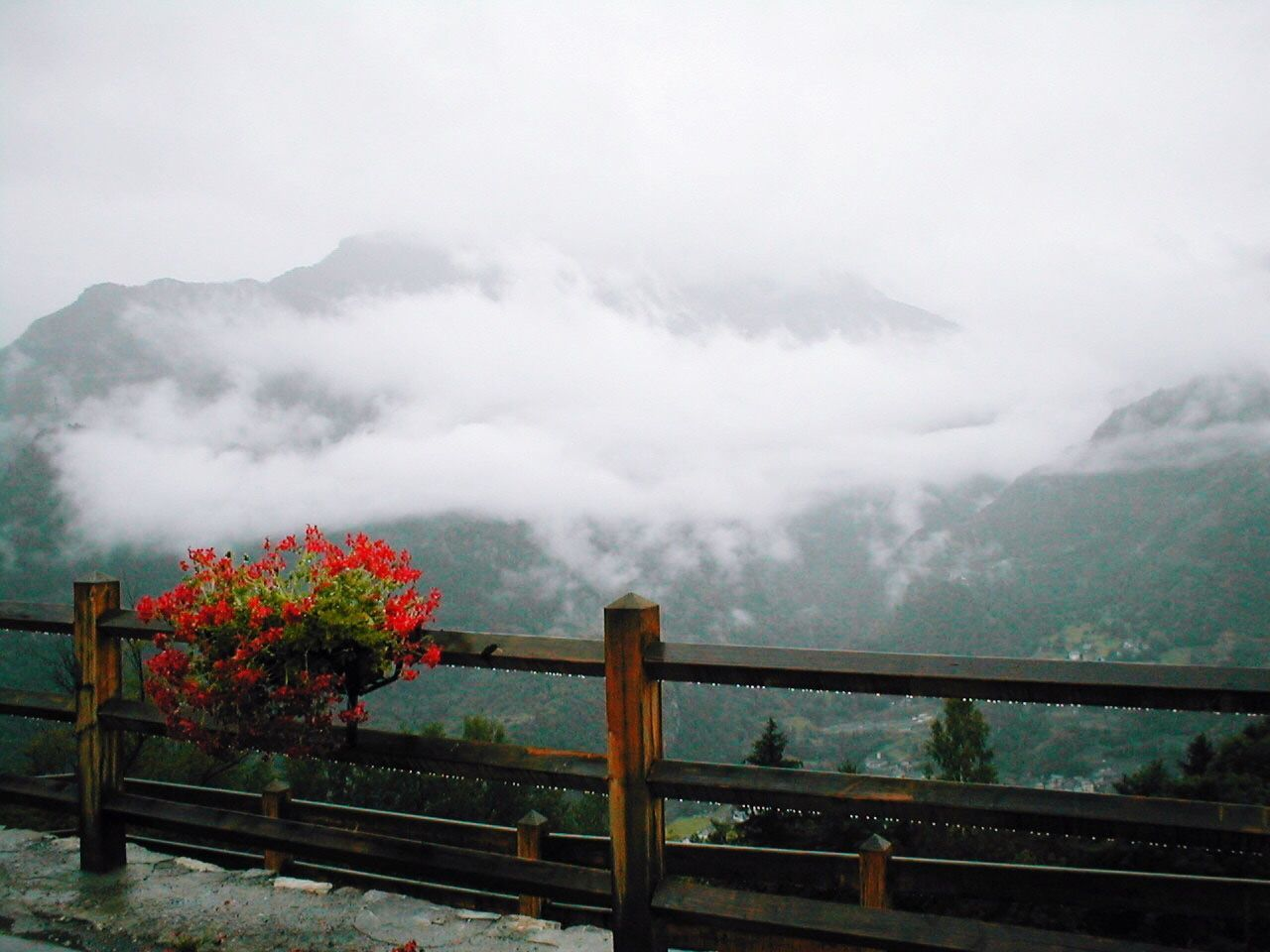 railing, nature, fog, mountain, beauty in nature, weather, scenics, sky, cloud - sky, no people, day, tranquility, tranquil scene, outdoors, tree, landscape, mountain range, water, flower