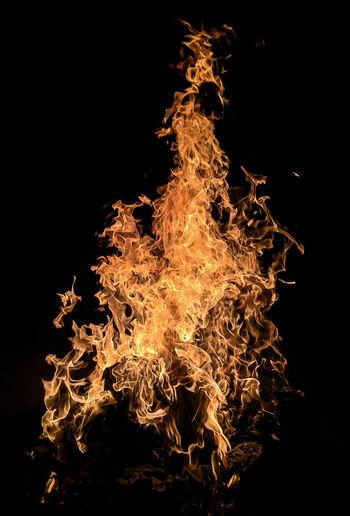Burning Fire On Black Background