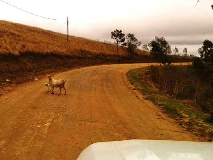En route to clinic Rural Kwa-Zulu Natal