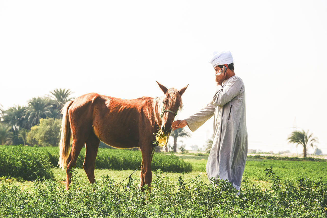 VIEW OF MAN RIDING HORSE ON FIELD