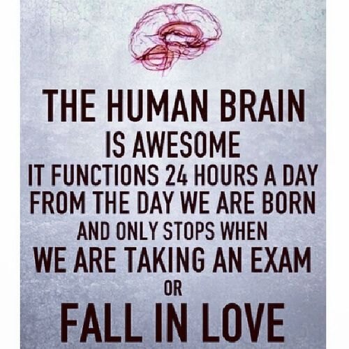 Human Brain Cunning Awesome instagood instafact instalove 24hours stop_during_exam lol