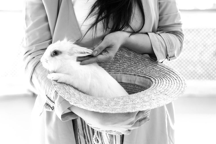 Woman Holding Rabbit In Hat
