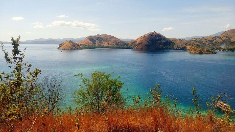 Komodo Island Wildlife & Nature EyeEm Selects National Geographic Komodo National Park East Indonesian Landscape Water Sea Beach Politics And Government Sky Horizon Over Water Tranquil Scene Scenics Ocean Shore Coast