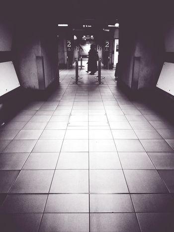 Twofold Andrographer Blackandwhite Notes From The Underground AMPt_community