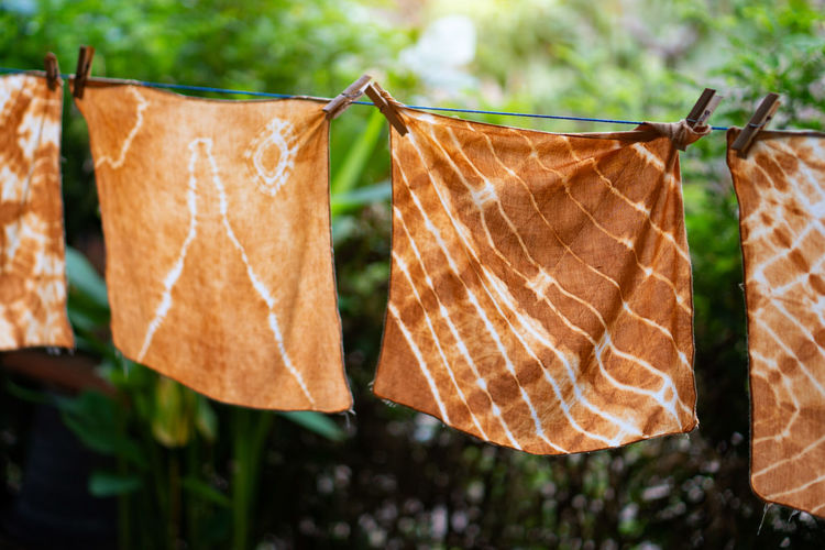 Close-up of clothes hanging on clothesline