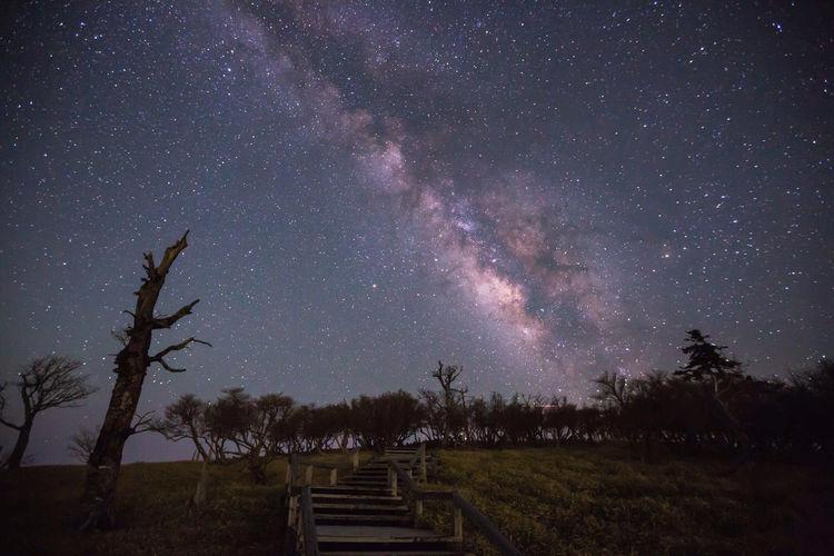 大台が原の天の川 Stay Out Nara Japan Japan Photography Night Nightphotography Nightscape Astronomy Galaxy Milky Way Tree Star - Space Space Constellation Space And Astronomy Sky Landscape Mountain Mountain Range