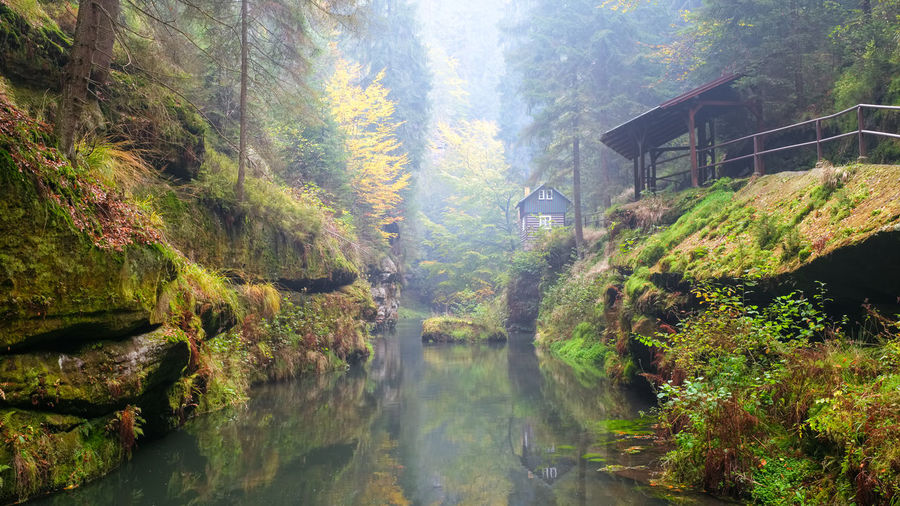 EyeEmNewHere Architecture Autumn Beauty In Nature Bridge - Man Made Structure Built Structure Day Footbridge Forest Idyllic Leaf Mountain Nature No People Outdoors Plant Reflection River Scenics Sky Tranquil Scene Tranquility Tree Water