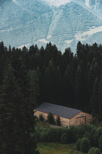 House amidst trees and mountains in forest
