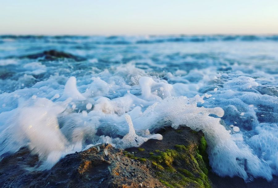 A wave crashing the shore at sunrise Wave Sea Nature Beauty In Nature Beach Horizon Over Water Close-up No People Outdoors Tranquility Sunrise Water Sky Rock Rocks Algae Algae Water First Eyeem Photo Live For The Story Lost In The Landscape