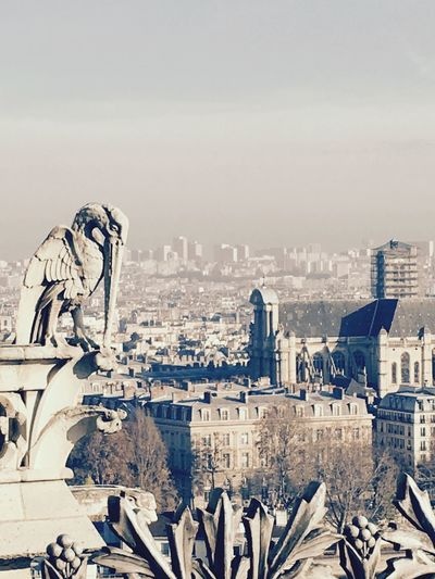 Architecture City Cityscape Building Exterior Built Structure Statue Sculpture Close-up Gargouille Gargoyle A Bird's Eye View Notre Dame De Paris Paris