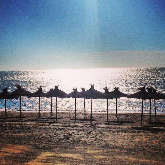 Espectacular dia de Sol en Malaga y Temperatura mas propias de Primavera Ozuquecalo