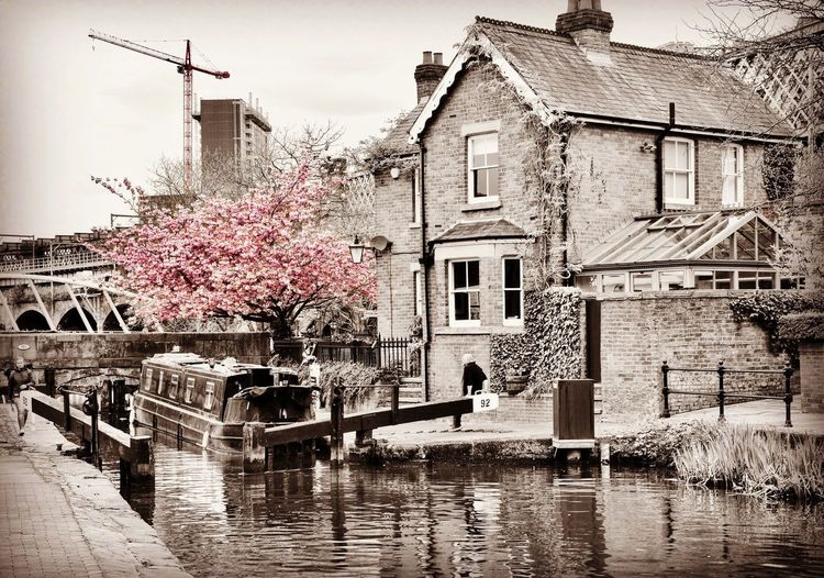 Architecture Built Structure Coloursplash Art Canal Picoftheday Flower Followme Beautiful Water Springtime City City Life Manchester England Imagewich Streetphotography ArtWork Tree Nikon Photography House Urban Postindustrial Lifestyles