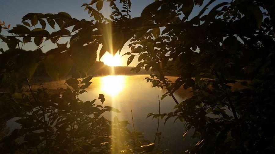 My Tuesday morning sunrise! Taking Photos Check This Out Sunrisephotography At The Lake Nofilternoedit Eyemnaturelover Picturejunkie Pretty♡ Enjoying Life Iowa