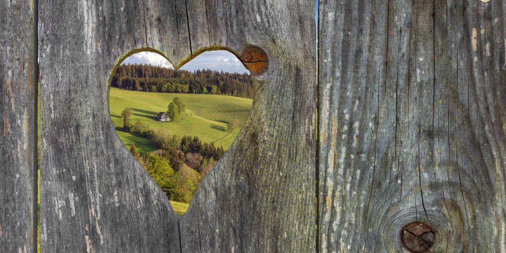 looking through a heart shape in the landscape Bogs Plant Barrier Textured  Fence No People Day Wood - Material Lonely House Farmland Farm St.Märgen Prospect Outlook Looking Through Looks Looking Heart Shape Shape Wooden Heard Weathered Rustic Nature View Through Landscape View Throug The Door View Black Forest Schwarzwald Wood Wooden Wooden Wall Wooden Door Washroom Toilets Toilet Squatting Squats South Germany Shaped Restroom Portaloo Portable Toilet Outside Outdoors Lavatory Hearts Heard  Germany Formed Exterial Shot Door Close-up Textured  Boundary Tree Green Color Tranquility Grass Beauty In Nature Trunk Plank Hole Tree Trunk
