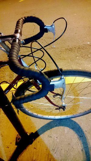 Cycling Schwinn Taking Photos My Bicycle