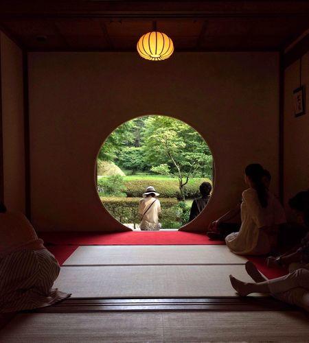 Tranquility #明月院 #鎌倉 #和 #静か #meigetsuin #kamakura #temple #japan #light #shadow #form #function