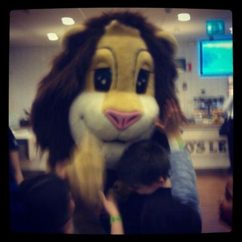 Leoslekland Lejon Kram Antony fick en kram av lejonet Leo igår.