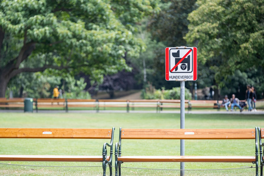 Bench Grass Green Color Public Park Barrier Close-up Communication Day Dog Focus On Foreground Green Color Growth Incidental People Nature Number Outdoors Park Plant Prohibition Sign Railing Road Sign Sign Sport Text Tree