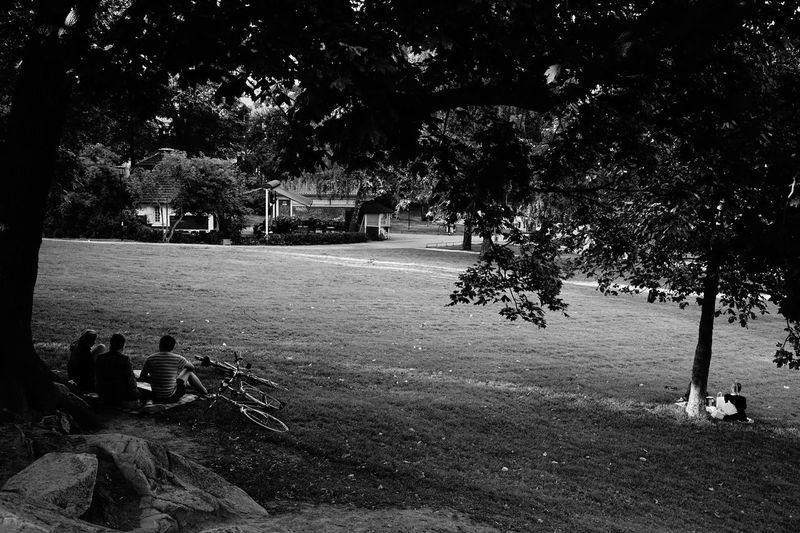 Street Photography Monochrome Togetherness Park SONY A7ii Sony FE 35mm F2.8