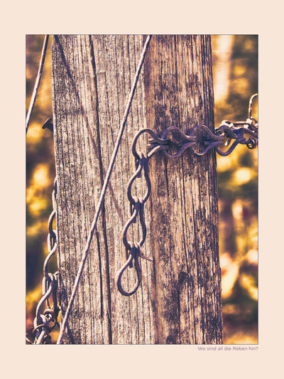 Close-up of chain hanging on wooden fence