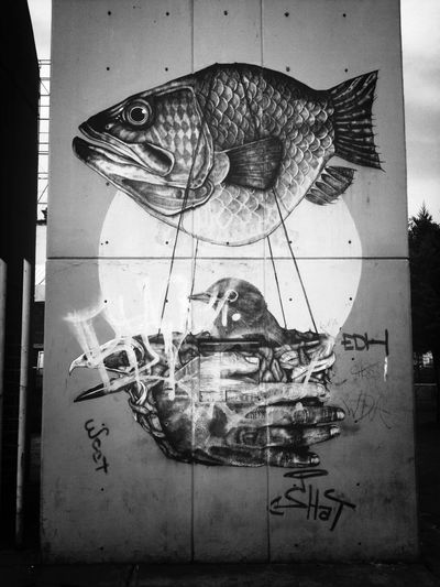 Fish EyeEm Bnw Streetphotography_bw AMPt_community Streetart