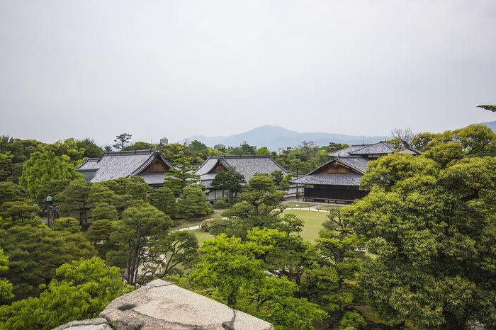 Kyoto, May 2017. Japan Japanese Culture Japanese Garden Nijo-jo Nijo-jo Castle, Kyoto Garden Kyoto Nijo Castle Nijo Castle Garden Nijo-jo Castle Traditional 二条城 日本