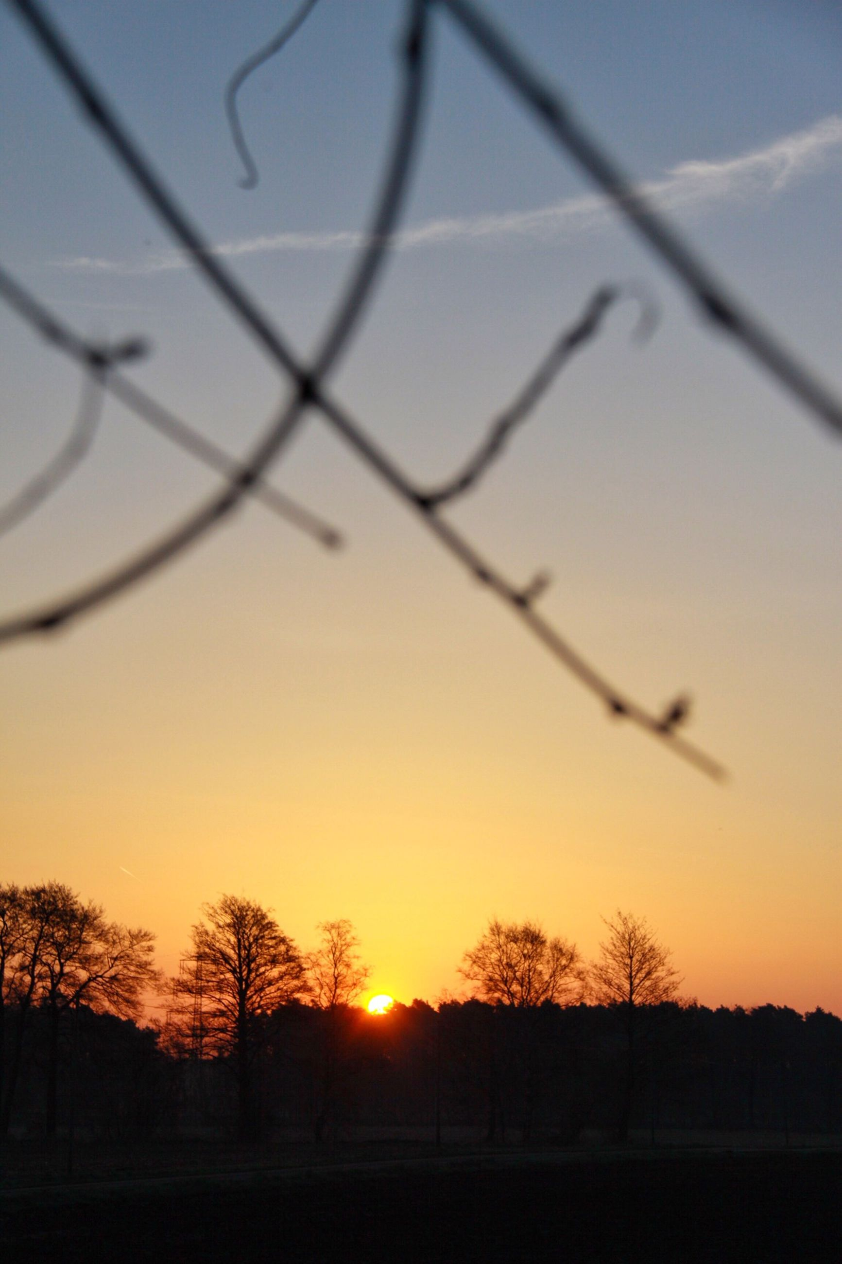 sunset, silhouette, orange color, sun, scenics, beauty in nature, tranquil scene, tranquility, tree, nature, idyllic, landscape, bare tree, sky, field, branch, sunlight, outdoors, no people, clear sky
