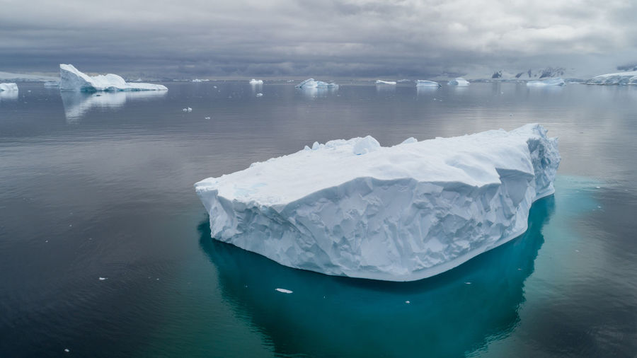 Icebergs in Charlotte Bay, Antarctic Peninsula. Antarctic Antarctica Drone  Frozen Ice Icebergs Aerial Aerial View Blue Climate Climate Change Cold Temperature Frozen Glacier Ice Iceberg Iceberg - Ice Formation Nature Ocean Scenics - Nature Sea Tranquil Scene Tranquility Water Winter