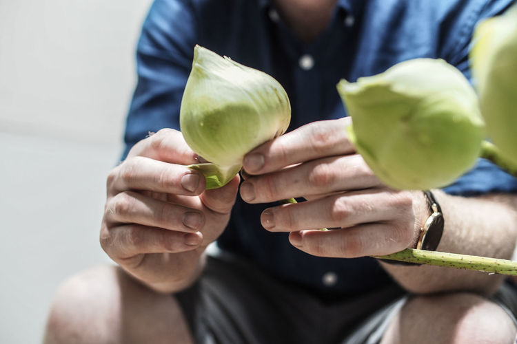 Multicultural Thailand Mindfulness Craft Lotus Water Lily Lotus Men Women Healthy Lifestyle Human Body Part Close-up Freshness Wellbeing Fruit Focus On Foreground Adult Human Hand Hand Healthy Eating Food Front View One Person Midsection Holding Selective Focus