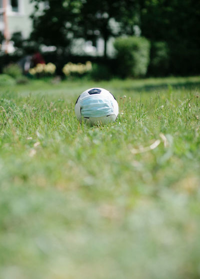View of a ball on field