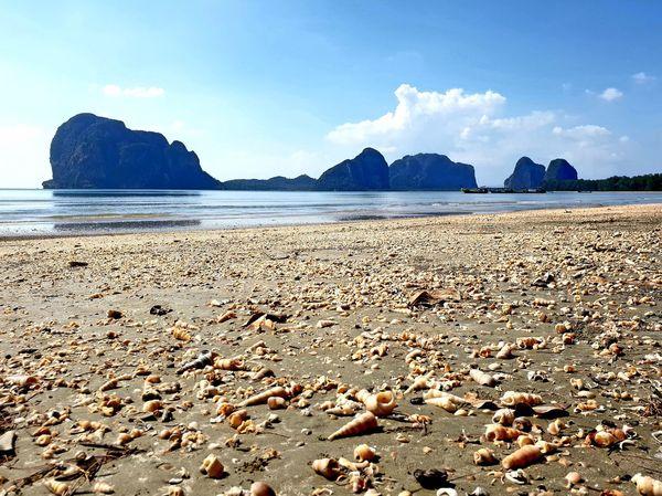 Millions of shells at Pak Meng Beach... Shell Shells Seashell From A Low Angle Blue Sky Water Sea Beach Sand Summer Rock - Object Sky Low Tide Tide Coastal Feature Coast Seascape Coastline Calm Rocky Mountains Ocean