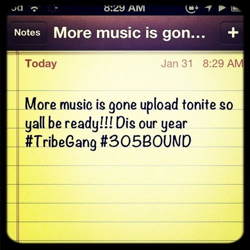 #MusicFlow #TribeGang #TribeNation