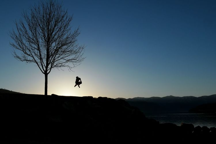 Silhouette person jumping by bare tree against clear sky