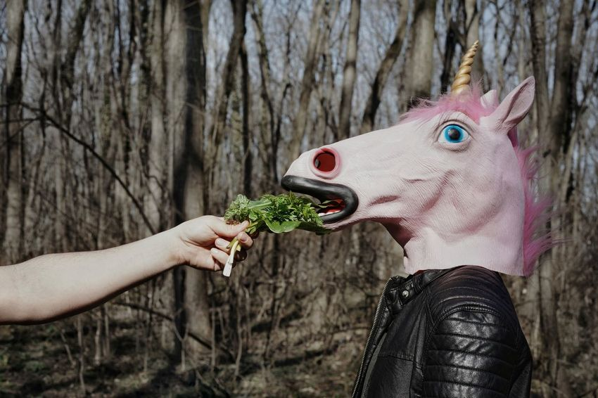 Hungry Human Body Part Human Hand Hand Trees Tree Trunk Bare Trees Woods Unicorn Head Mask Mask - Disguise Two People Men Unicorn Feeding  Feeding Animals Forest