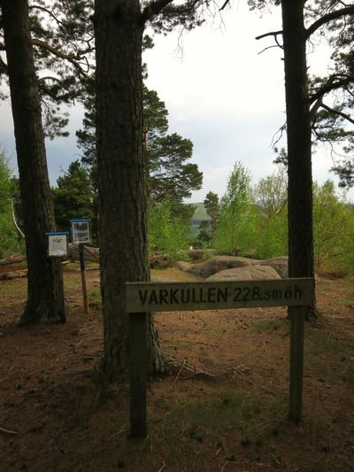 Varkullen, at 228 m above sea level. Nature Great View Trekking Hill