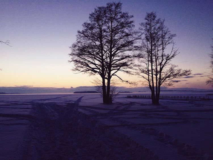 Nature Photography Nature Taking Photos Winter CarpeDiem  Hello World Relaxing First Eyeem Photo