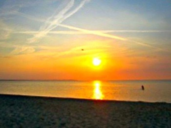 Horizon Over Water Sunset Sea Beach Sun Water Scenics Tranquil Scene Beauty In Nature Sunny Day Lifestyles Majestic Outdoors Tranquility Idyllic Nature Bird Travel Destinations Sand Vacations Sky Shore Orange Color Naturelovers Outdoors