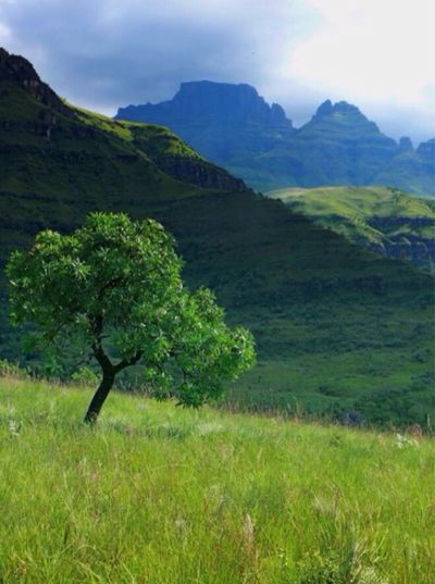 My Country In A Photo Majestic Mountains South Africa Drakensberg My Country