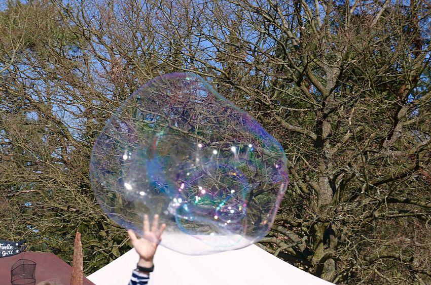 Seifenblase Seifenblasen Soap Bubbles Soapbubble Hand Kinderhände Kinderhand Relaxing Hello World Tree Low Angle View Bubbles Bubble