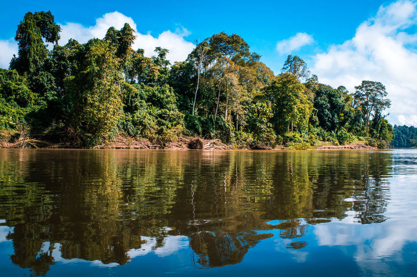 KAYAN RIVER - North Kalimantan Beauty In Nature Cloud - Sky Day Green Color Growth Lake Nature No People Outdoors Plant Reflection Scenics - Nature Sky Tranquil Scene Tranquility Tree Water Waterfront Adventures In The City