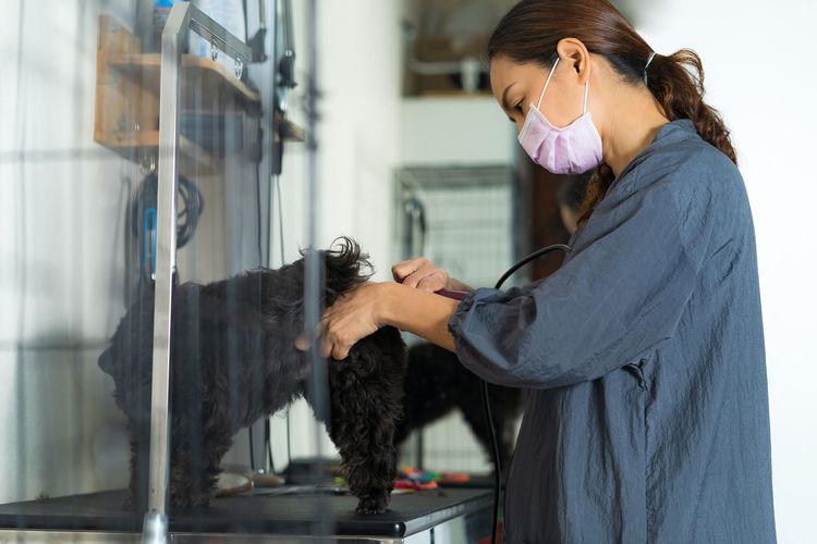 Woman grooming black dog at home