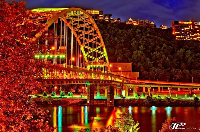 Overnight Success Bridge - Man Made Structure Architecture Built Structure Illuminated Building Exterior Connection Bridge - Man Made Structure Tree Water City Sky Tower Reflection Engineering Travel Destinations Waterfront City Life Tall - High Outdoors Famous Place Arch