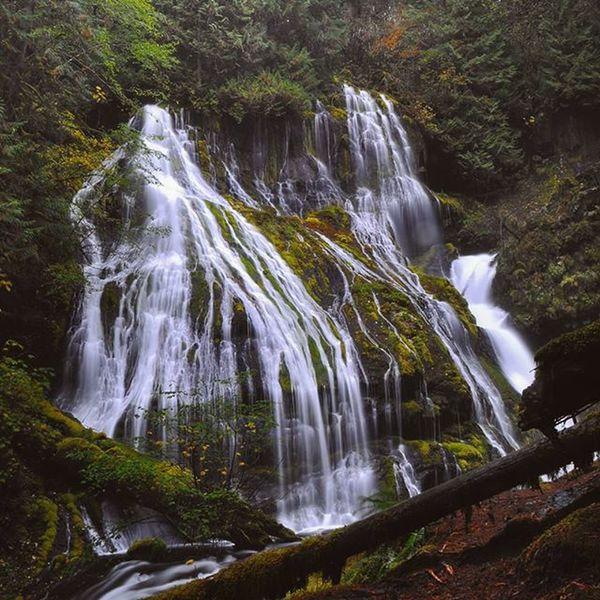 Panther Creek falls, WA. Panthercreek Cascadiaexplored Cascadia Washington Pnwcollective Pacificnorthwest Northwest USA Waterfall Columbiarivergorge WestCoast River Horsetailfalls MultnomahFalls . Theoutbound Exploring Hiking Hikingadventures Washingtonexplored