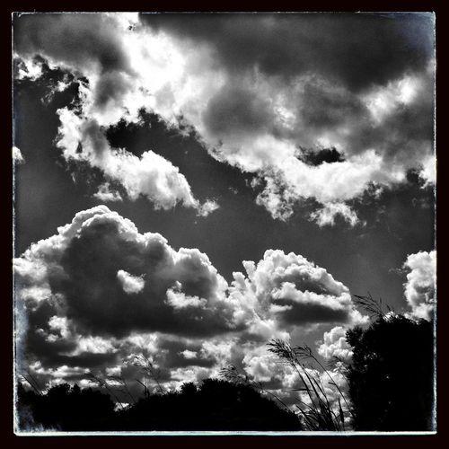 Clouds And Sky NEM Black&white AMPt_community NEM Clouds
