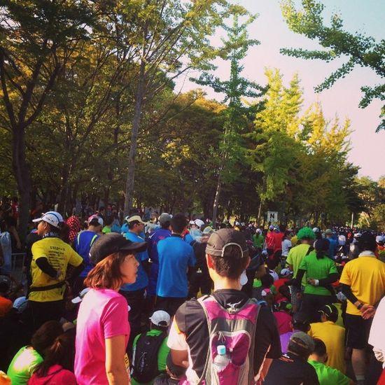 う〜、緊張してきた。大阪マラソン