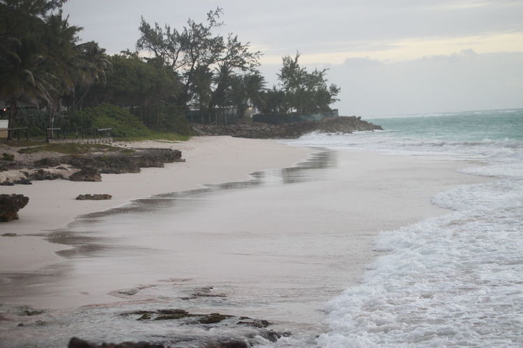 Barbados Beach Good Morning Morning Morning Light Ocean Power In Nature Sand Sea Vacations Voyage Water